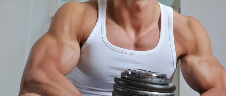 Bockshornklee beim Bodybuilding einsetzen