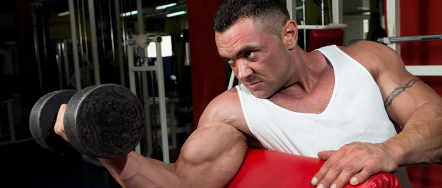 Mit Bockshornklee das Testosteron erhöhen